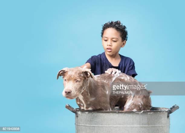chico bañarse su perro - darse un baño fotografías e imágenes de stock