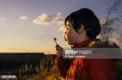 Boy blowing a dandelion head