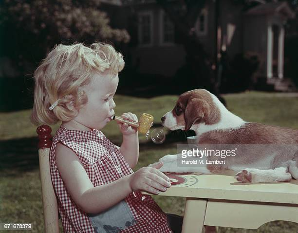 boy blowing bubbles with bubble wand in front of puppy  - pawed mammal stock pictures, royalty-free photos & images