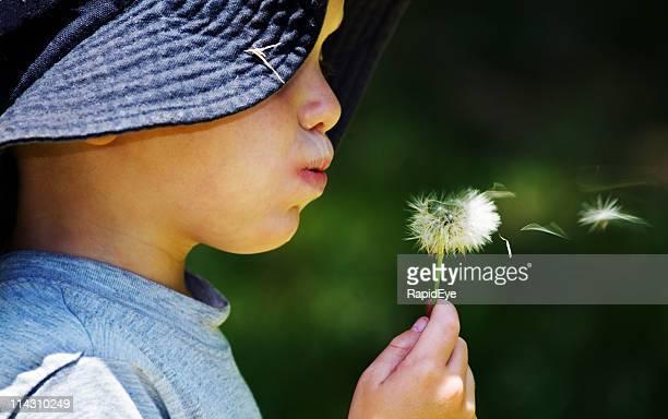 Garçon souffler Fleur de pissenlit