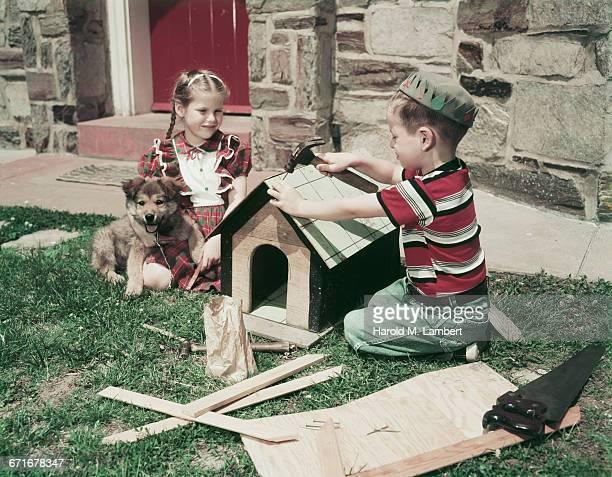 boy building dog house with girl and puppy sitting at side  - mamífero con garras fotografías e imágenes de stock
