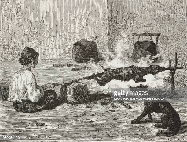 A boy carefully cooking Albanian mutton on a spit Montenegro life drawing by Theodore Valerio from Dalmatia by Charles Yriarte from Il Giro del mondo...