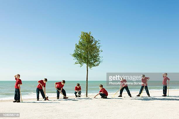 Boy caring for tree planted on sandy beach