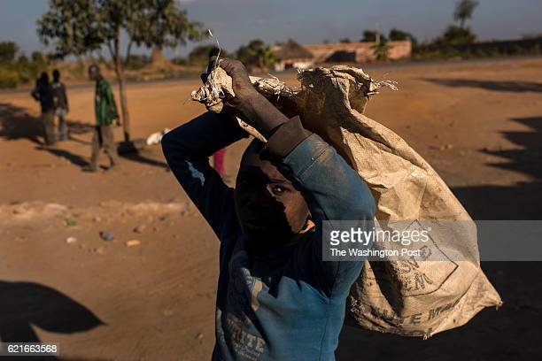 A boy carries a bag used to transport cobalt laden dirt and rock at Musompo a mineral market outside Kolwezi on June 7 2016 Cobalt is used in...