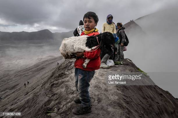 A boy carries a goat result of catch thrown by Tenggerese worshippers during the Yadnya Kasada Festival at crater of Mount Bromo on July 18 2019 in...