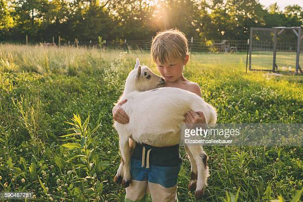 Boy carrying a young goat