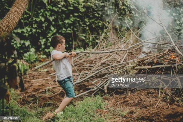 boy  carrying firewood for a fire