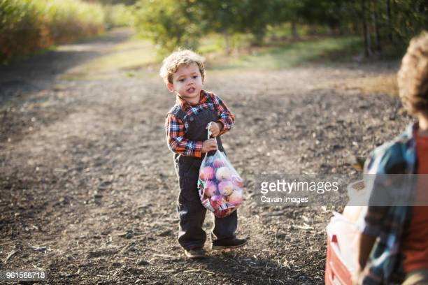 Boy carrying plastic bag of fruits while standing on road
