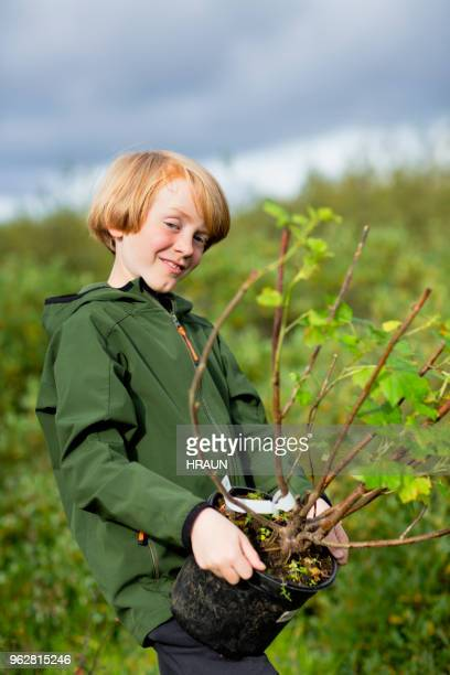 Boy carrying potted plant while gardening on field
