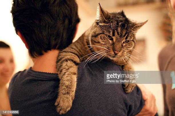 Boy carrying tiger cat