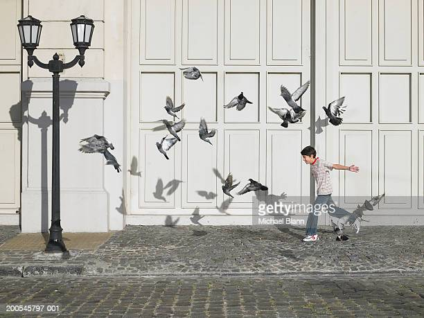 boy (11-13) chasing pigeons in street - pigeon stock pictures, royalty-free photos & images