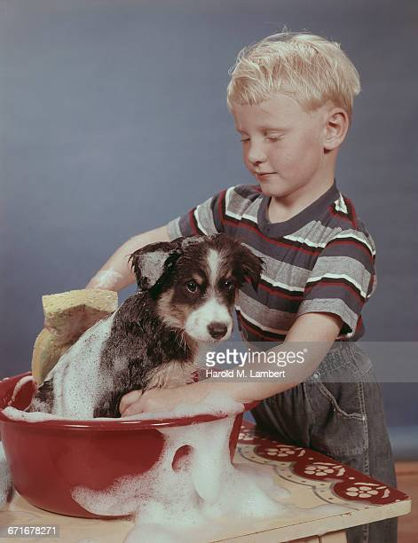 Boy Cleaning His Dog