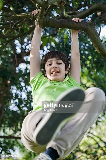 Junge Klettern auf einem Baum