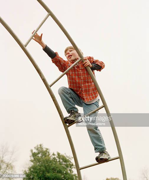 boy (6-8) climbing jungle jim, reaching, autumn - momo challenge stock photos and pictures