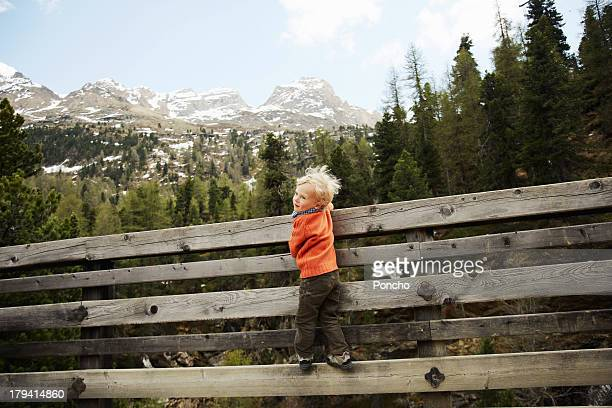boy climbing on a wood fence - martell valley italy stock photos and pictures
