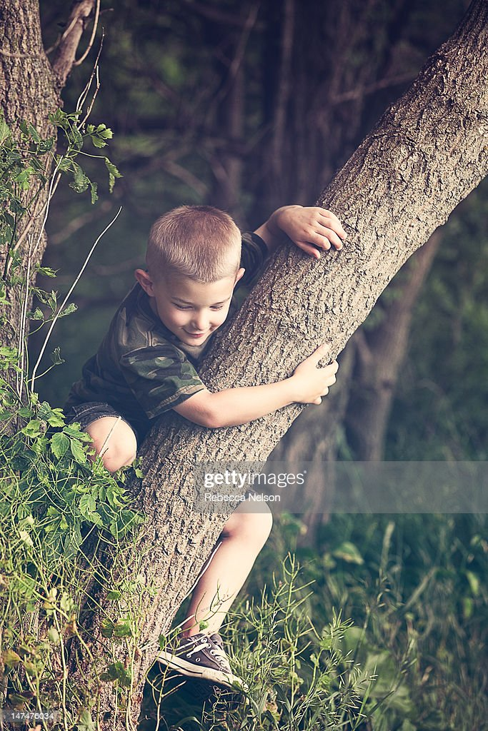Boy climbing on tree : Foto de stock