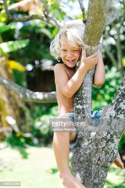 Boy (4-5) climbing on tree