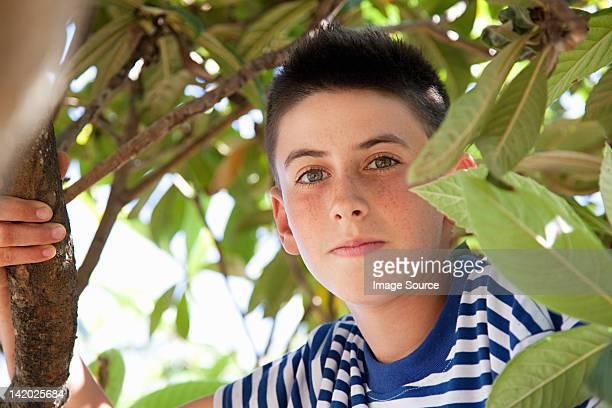 Boy climbing tree, portrait
