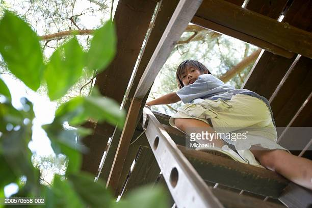 Boy (8-9) climbing up into tree house, low angle view, portrait