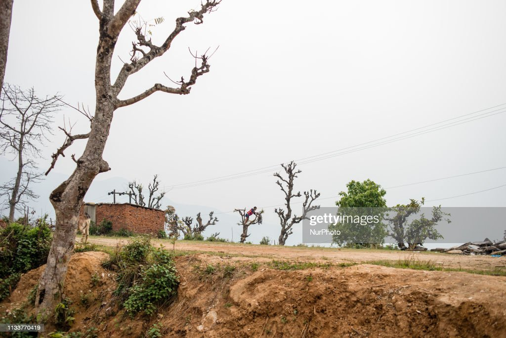 Daily Life In Bandipur : News Photo