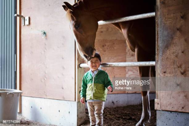 Boy communicating with horse in the horse stable