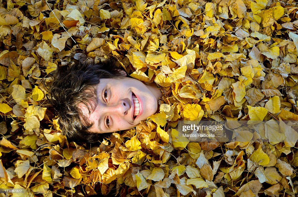 Boy covered with autumn leaves : Stock Photo