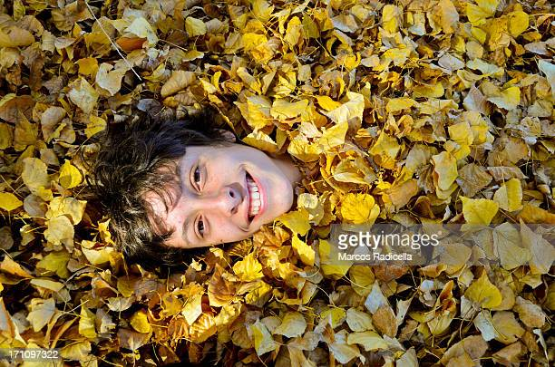 boy covered with autumn leaves - radicella stock-fotos und bilder
