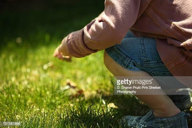 Boy crouching in grass