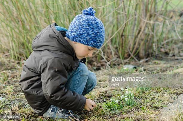 Boy crouching looking at snowdrop flower