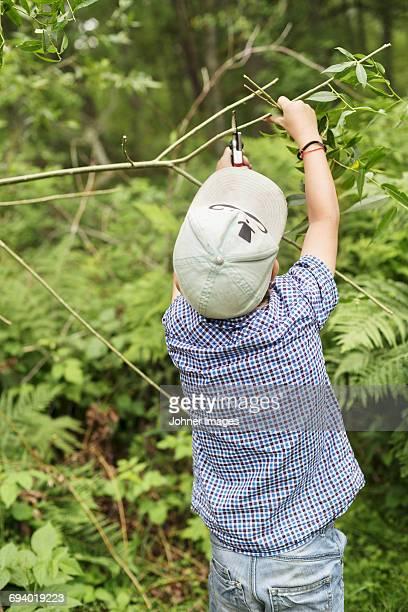 Boy cutting twig