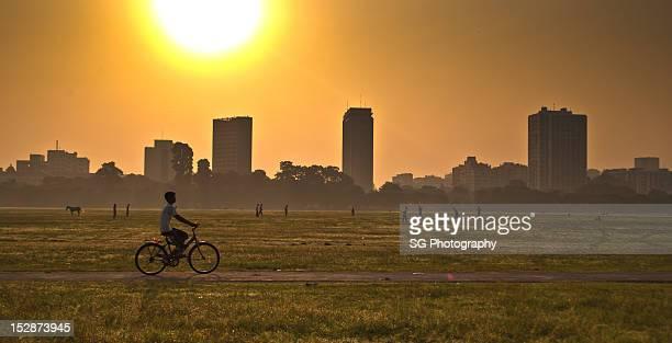 Boy cycling in park
