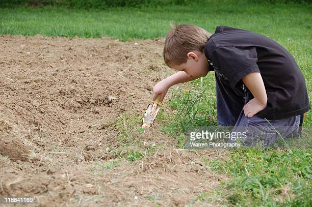 Boy digging at garden edge