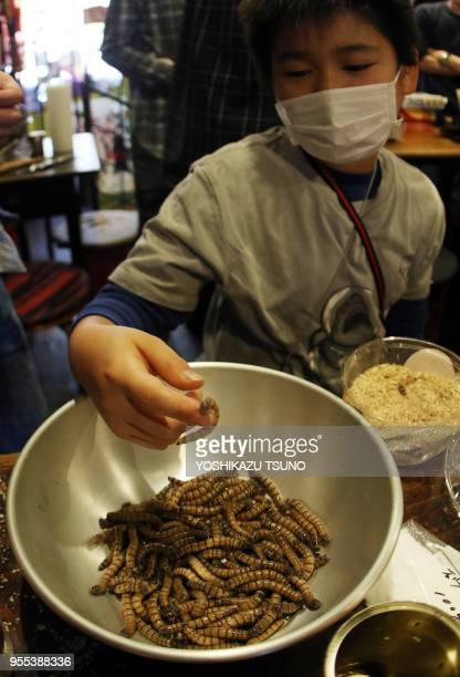 A boy displays mealworms for cooking at a Christmas party to eat insect foods in Tokyo on December 24 2016 Some 30 people gathered to eat insect...