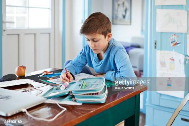 boy doing homework on dining table - ホームスクーリング ストックフォトと画像