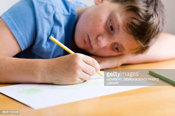 boy drawing a picture - sigrid gombert stock-fotos und bilder