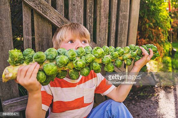 Boy eating a stalk of brussels sprouts