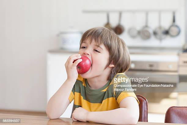 boy eating apple in kitchen - apple fruit stock photos and pictures