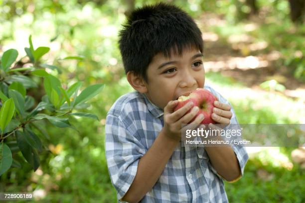 Boy Eating Fresh Apple Standing At Forest
