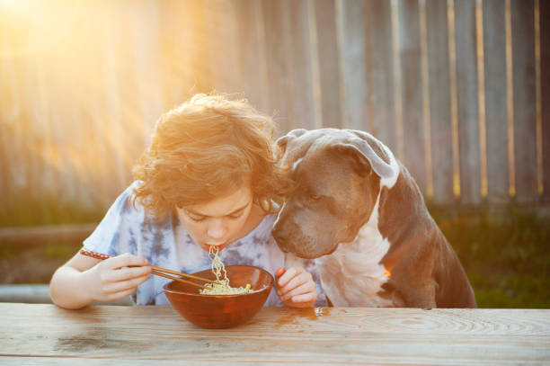 boy eating noodles with dog