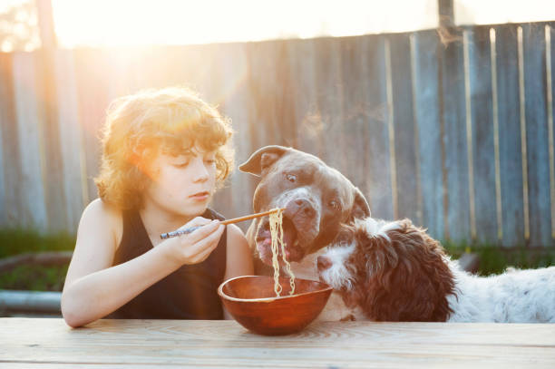 boy eating noodles with dogs