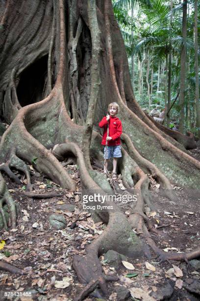 Boy enjoying a tropical forrest walk