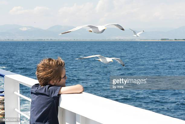 boy enjoys the seagulls on a ferry - ferry stock photos and pictures