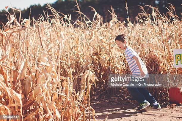 Boy Enters Corn Maze