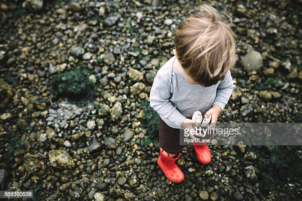 boy exploring rocky beach - puget sound stock pictures, royalty-free photos & images