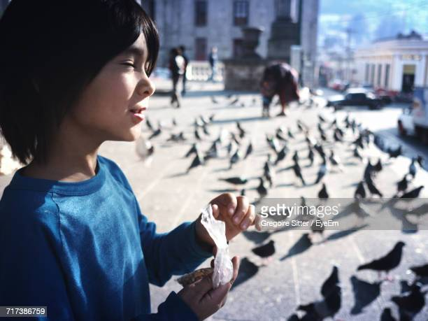 boy feeding flock of pigeons on sidewalk - quetzaltenango stock photos and pictures