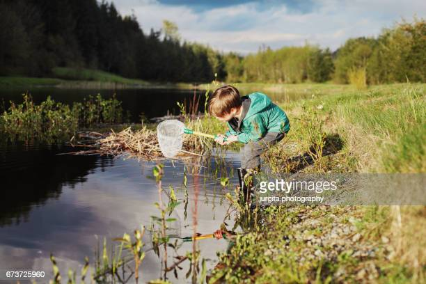 Boy fishing for tadpoles ant the pond