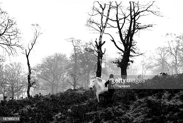 A boy gets ready to ride his Welsh pony out of the forest in1966 overlooking a mining town in South Wales