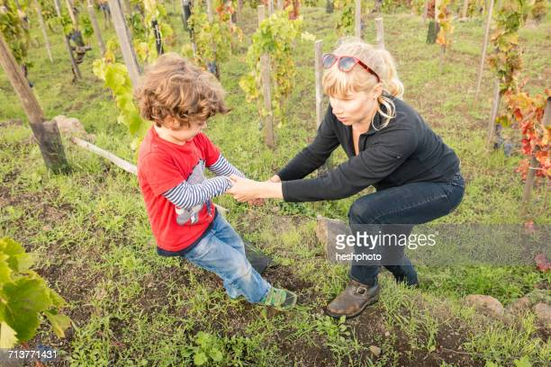 boy giving mother a helping hand in vineyard - heshphoto stockfoto's en -beelden