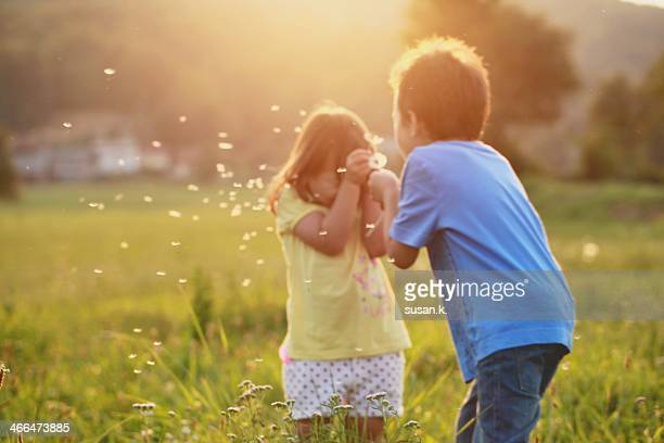 Boy happily blowing dandelions on his sister face.