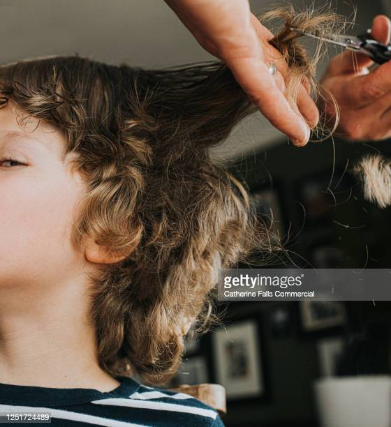 boy having his hair cut at home - extra long stock pictures, royalty-free photos & images